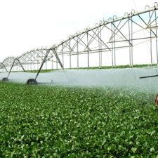 Seu investimento em Irrigação com tecnologia e precisão. (2)